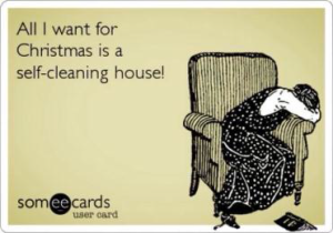 self-cleaning house